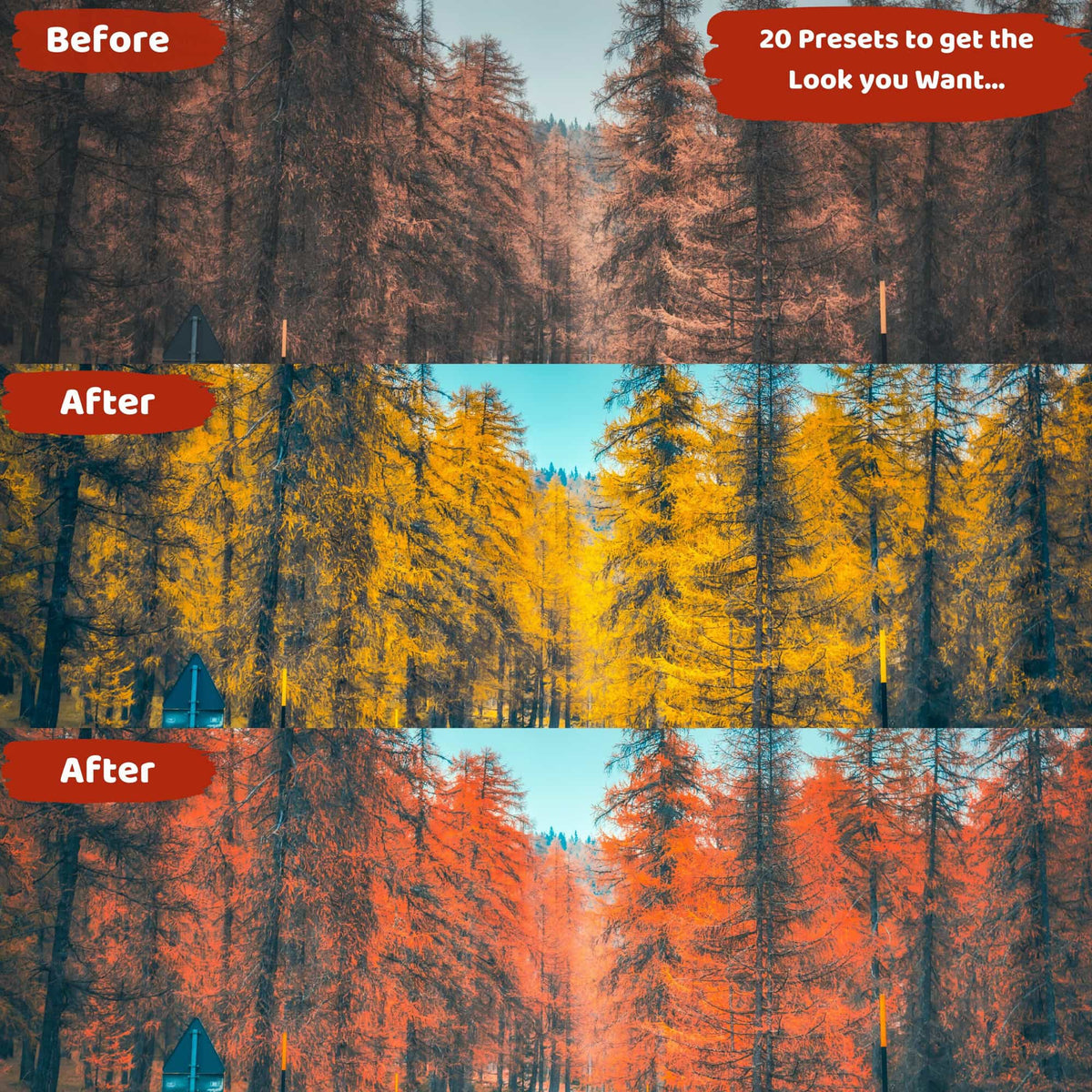 Fall Ligthtroom Presets Before and After