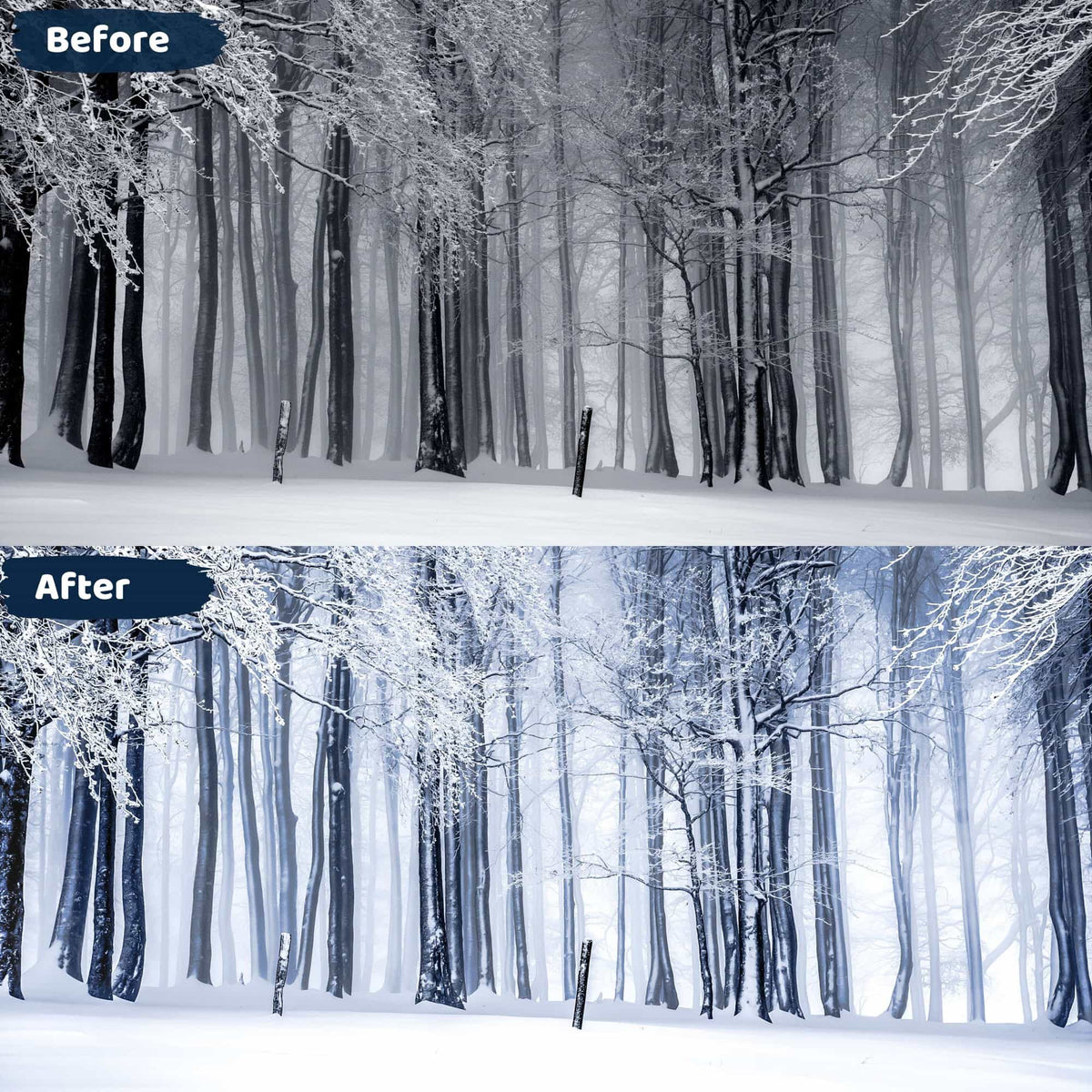 Winter Presets Lightroom Mobile and Desktop