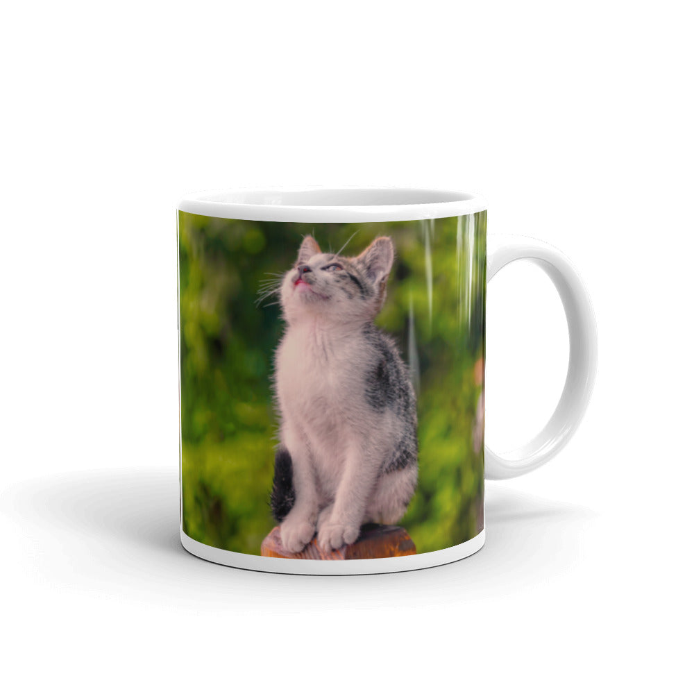 Mug - The Cat Collection - The Dreamy Look