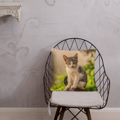 Decorative Throw Pillows - Cat Collection - The Mysterious Look