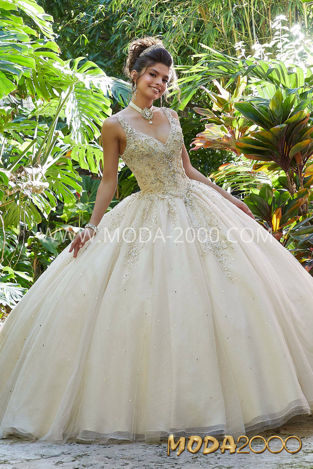 Quinceanera and Sweet Sixteen Dress.