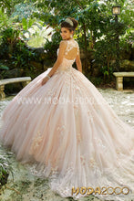 Load image into Gallery viewer, Quinceanera and Sweet Sixteen Dress.