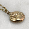 9ct Gold Lion Coin Necklace