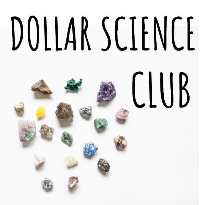 DOLLAR SCIENCE CLUB