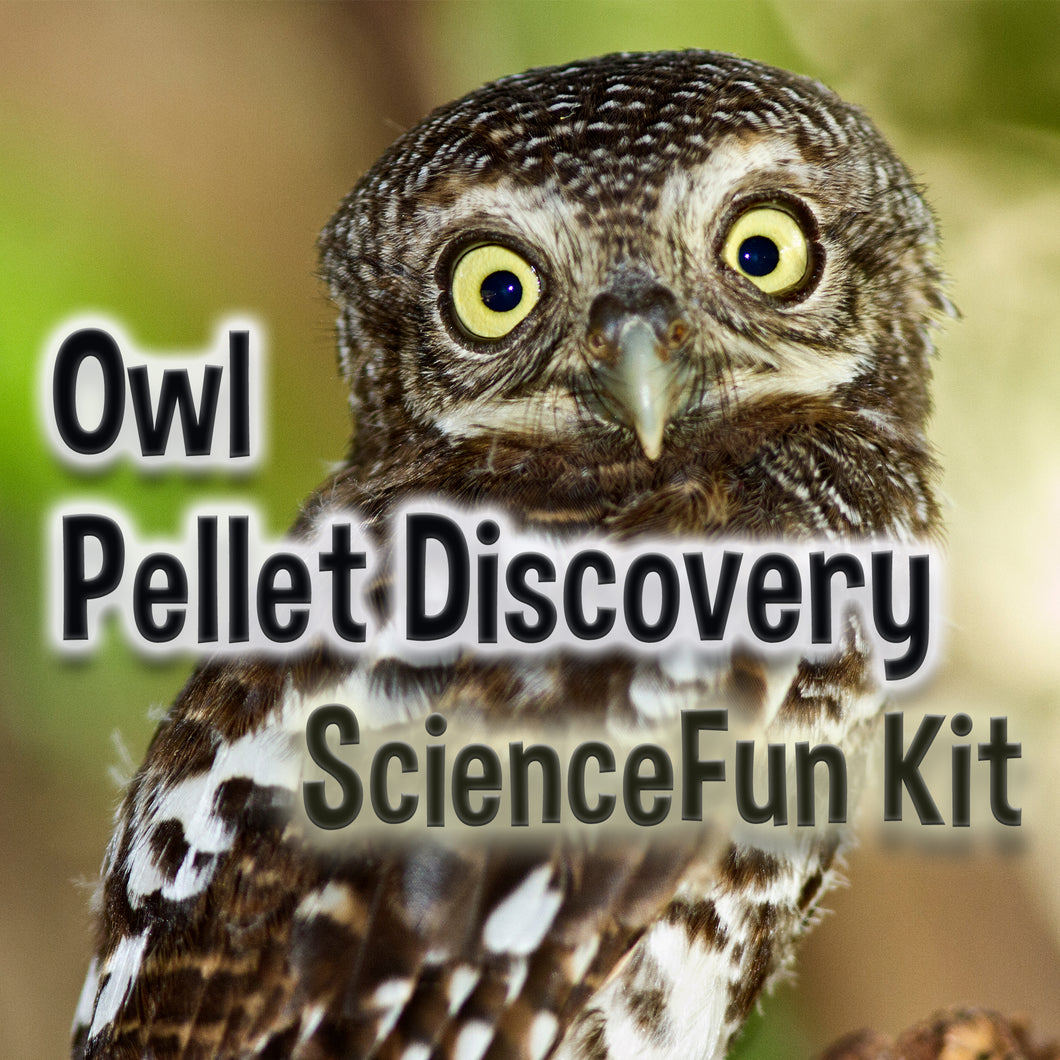 Living Lab Owl Pellet Discovery - Science Fun Kit, #kit291