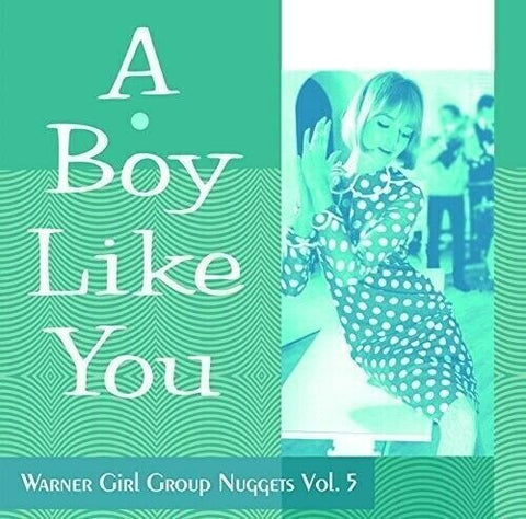 Various Artists-Warner Girl Group Nuggets 5: A Boy Like You (CD)