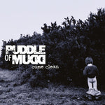 Puddle Of Mud-Come Clean (LP)
