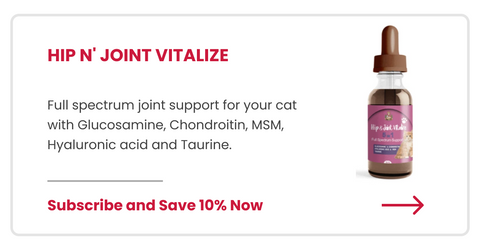 Hip and Joint Vitalize for Cats