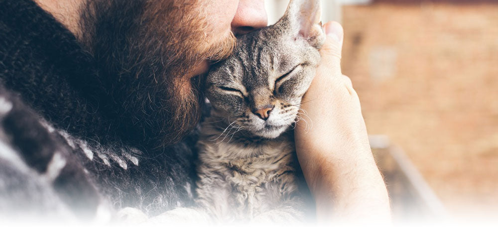 Tender, Loving, Care - Scruffy Paws Nutrition