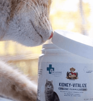 Scruffy Paws Kidney-Vitalize Chews Scruffy Paws Nutrition