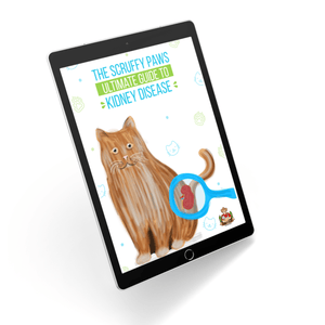 The Scruffy Paws Guide To Kidney Disease (eBook)