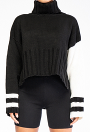 Turtle Neck Contrast Sleeve Striped Sweater