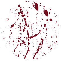 Dundee Cycles
