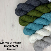 Ready to knit kit for the Chevron blanket by Espace tricot