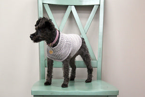 Kit prêt-à-tricoter harnais-friendly dog sweater par Jacqueline Cieslak