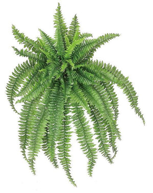 "Load image into Gallery viewer, 56"" Large Boston Fern - Green"