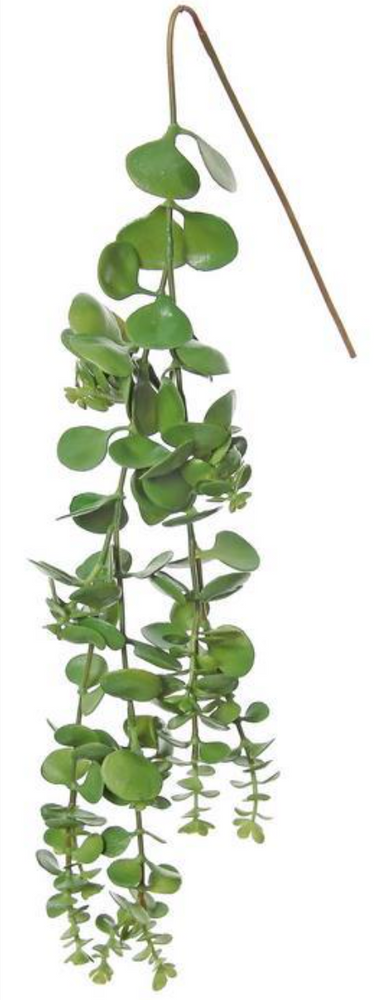 "Load image into Gallery viewer, 22"" Hanging Succulent Vine - G"