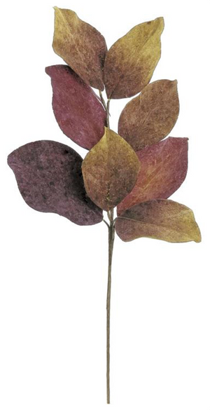"Load image into Gallery viewer, 22"" Rembrandt Magnolia Leaf -W"
