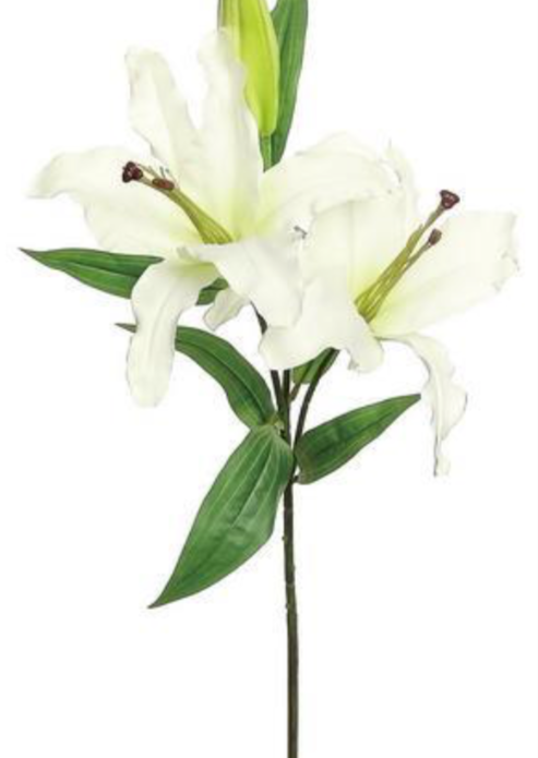 "Load image into Gallery viewer, 37"" Casa Blanca Lily w/ Bud"