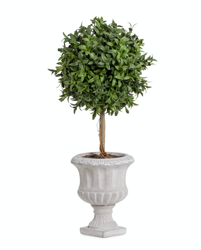 "Load image into Gallery viewer, 18"" Arabella Potted - Single"