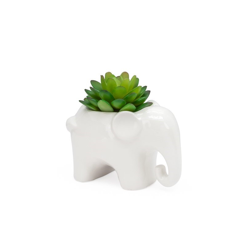 Load image into Gallery viewer, Animal Garden Eleph Succulent