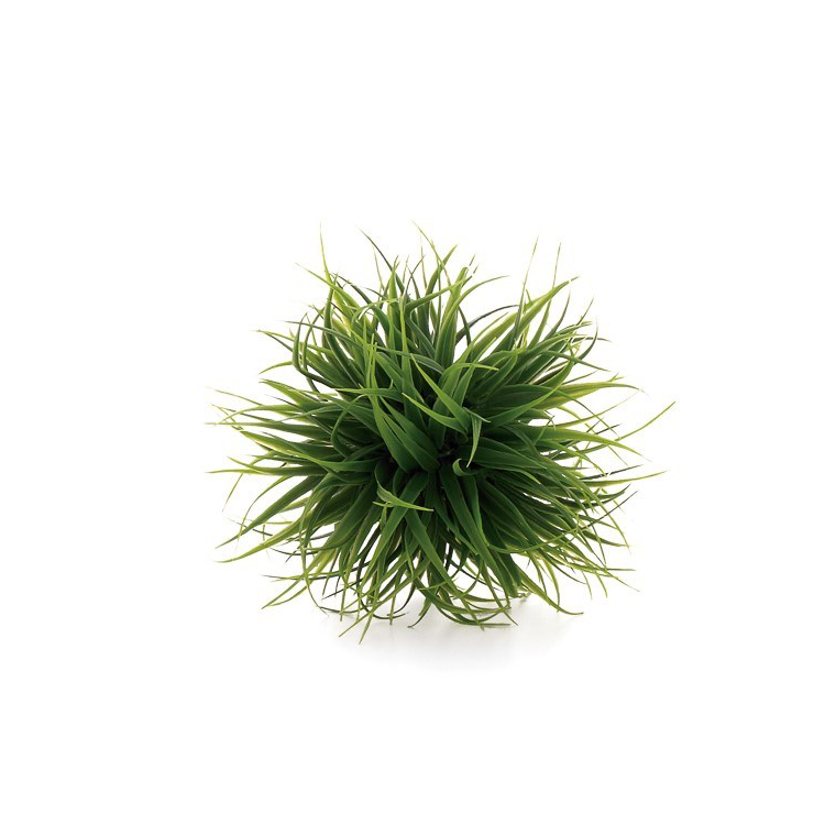 Grass Ball - Small