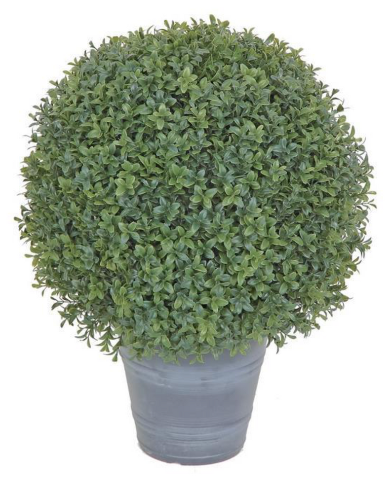 "22"" Boxwood Ball Topiary"