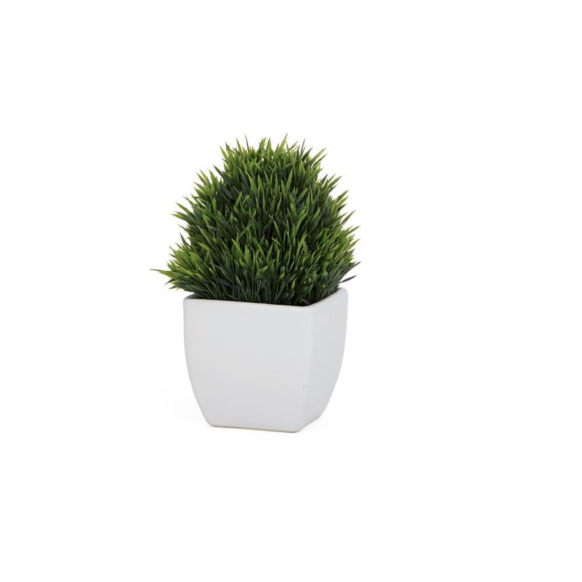 Tapered Ceramic Potted Grass