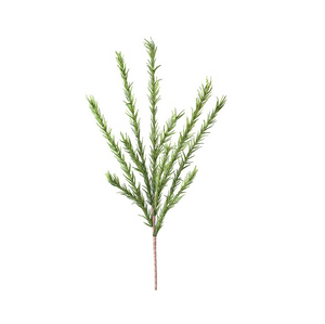 Desert Pine Stem - Green