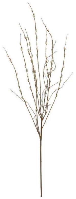 "60"" Pussy Willow Branch"