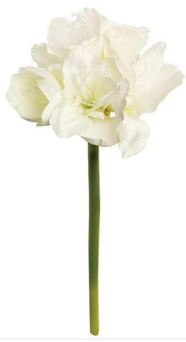 "Load image into Gallery viewer, 21"" Amaryllis w/ Bud - Cream"