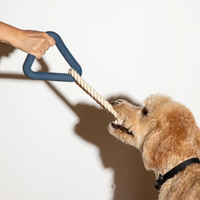 Load image into Gallery viewer, Dog Playing Wild One Tug Toy Triangle with Rope