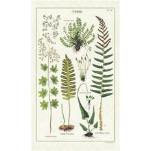 Load image into Gallery viewer, ferns tea towel