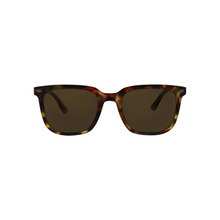Load image into Gallery viewer, CRUZ SUNGLASSES tortoise front