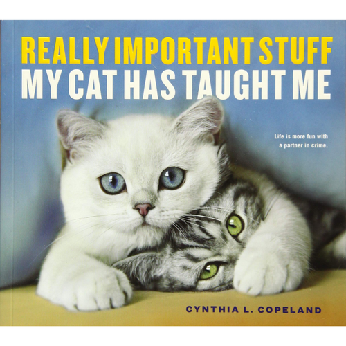 REALLY IMPORTANT STUFF MY CAT HAS TAUGHT ME FRONT COVER