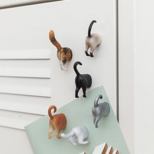 CAT BUTT MAGNET SET IN USE