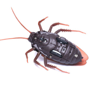 Simulation Animal Cockroach Robot