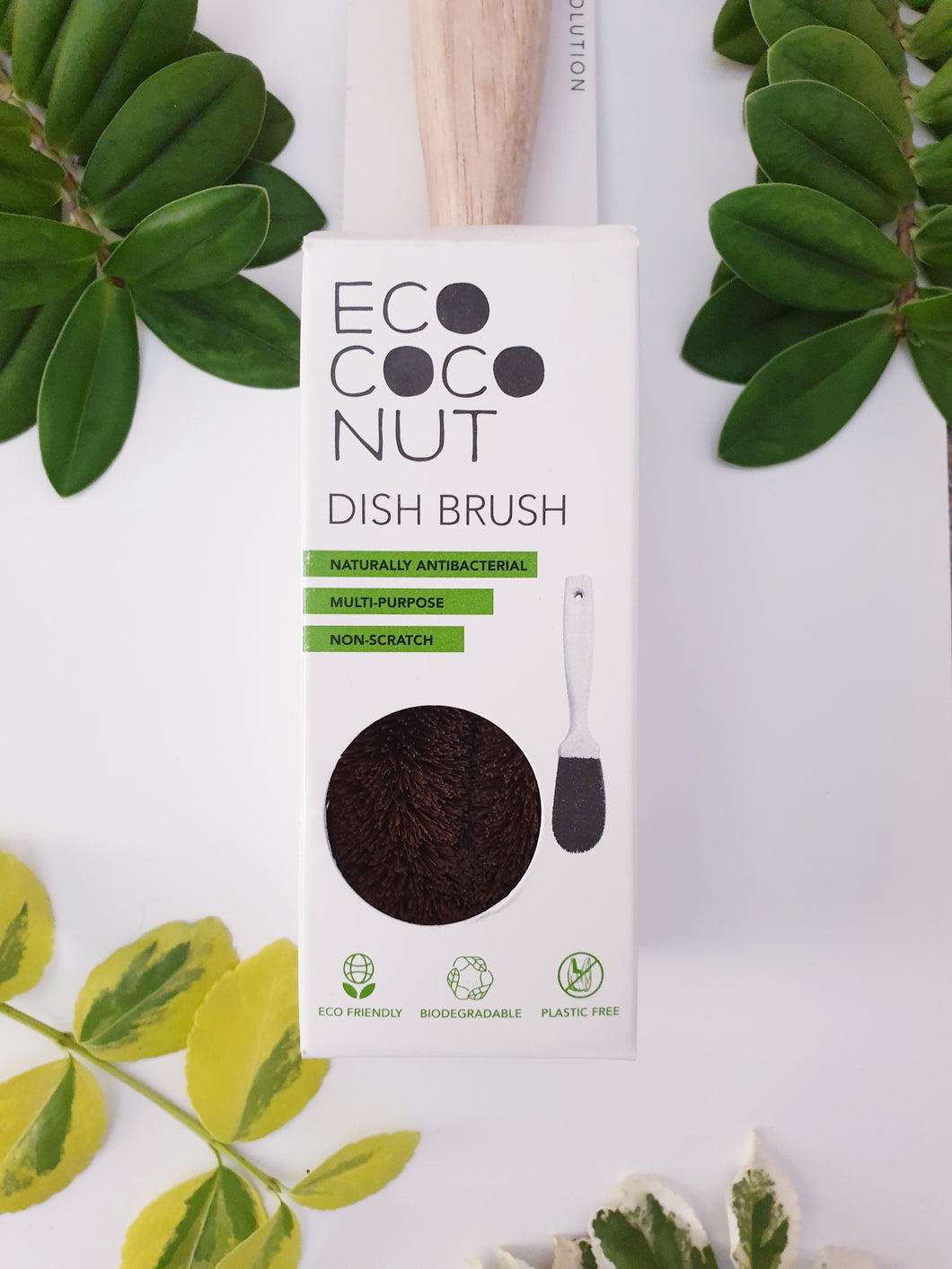 Coconut Fibre Dishbrush