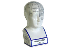 Phrenology Head - Medium