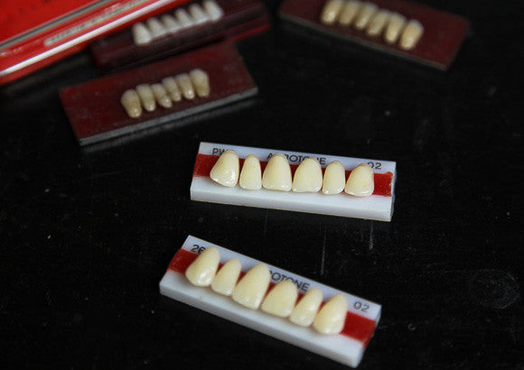 Vintage Teeth Moulds