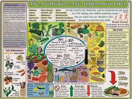 Anti-Oxidant/Anti-Inflammation Diet
