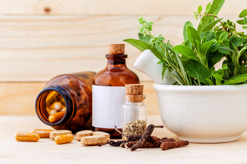 Certified Traditional Naturopath (CTN)