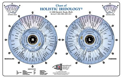 Chart of Holistic Iridology