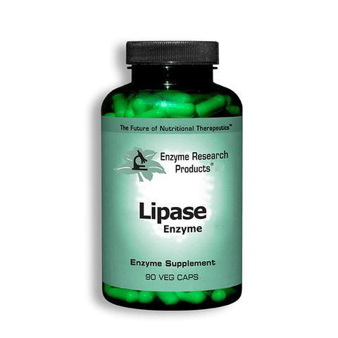 Lipase Enzyme by ERP