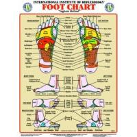 Foot & Hand Chart Set (Small)