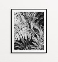 Load image into Gallery viewer, Timeless Ferns