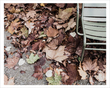 Load image into Gallery viewer, Autumn Leaves - Luxembourg Gardens