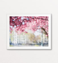 Load image into Gallery viewer, Painterly Cherry Blossoms, Paris