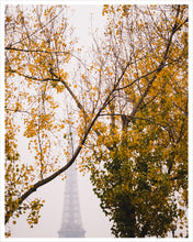 Load image into Gallery viewer, Misty Eiffel