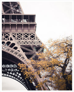 Eiffel in Autumn